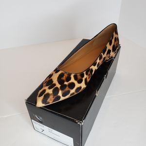 J Crew pointed toe calf hair leopard flats